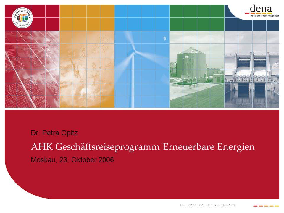 E F F I Z I E N Z E N T S C H E I D E T Dr. Petra Opitz AHK Geschäftsreiseprogramm Erneuerbare Energien Moskau, 23. Oktober 2006