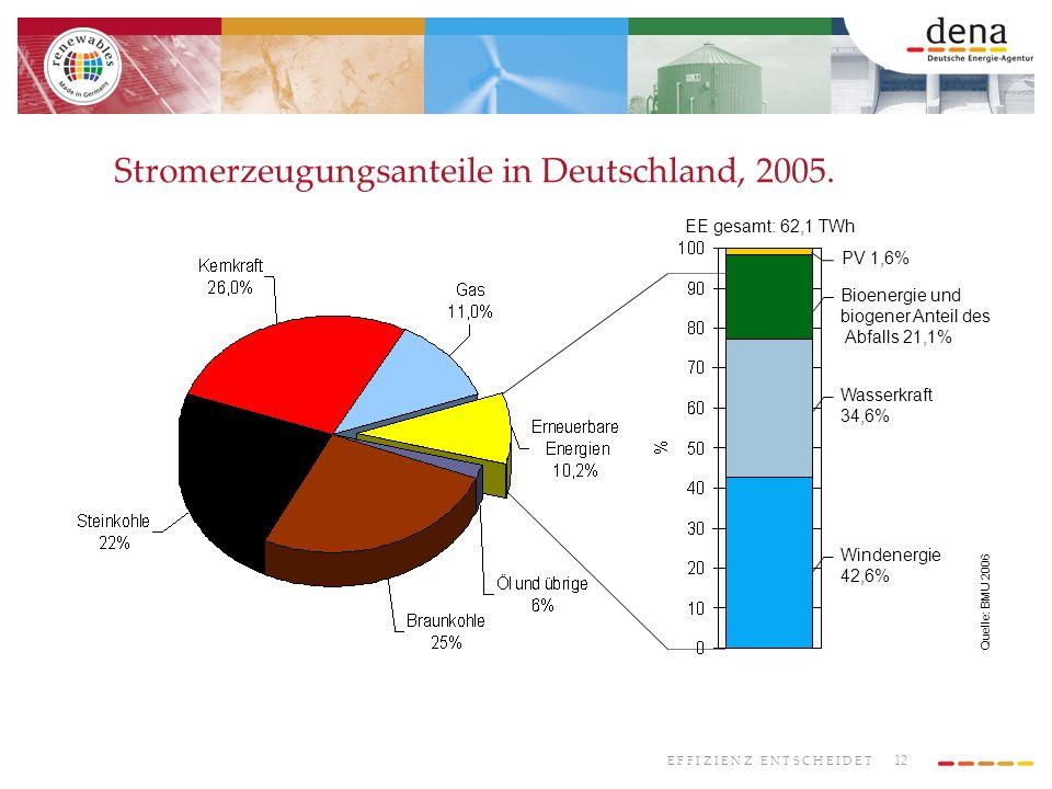 12 E F F I Z I E N Z E N T S C H E I D E T Stromerzeugungsanteile in Deutschland, 2005. PV 1,6% Bioenergie und biogener Anteil des Abfalls 21,1% Wasse