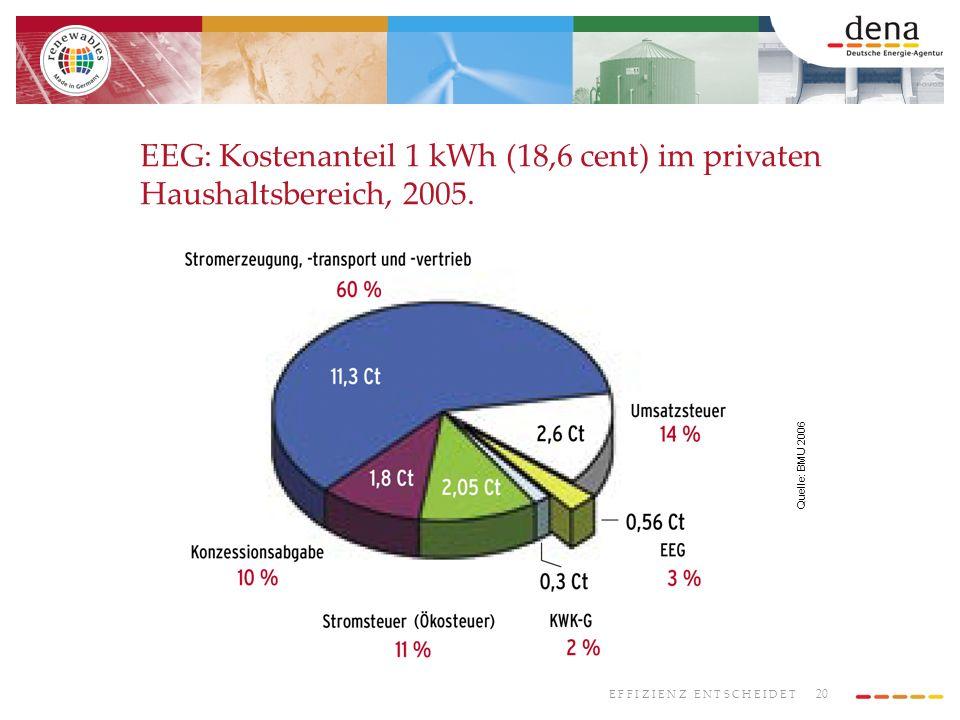 20 E F F I Z I E N Z E N T S C H E I D E T EEG: Kostenanteil 1 kWh (18,6 cent) im privaten Haushaltsbereich, 2005. Quelle: BMU 2006