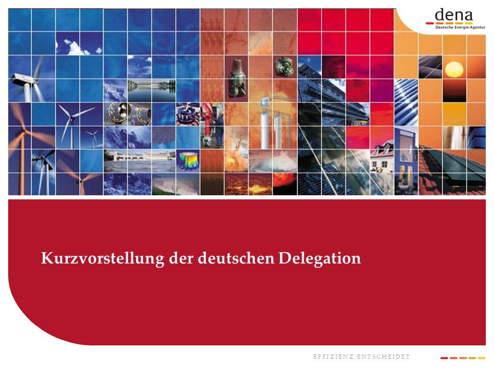 E F F I Z I E N Z E N T S C H E I D E T Kurzvorstellung der deutschen Delegation
