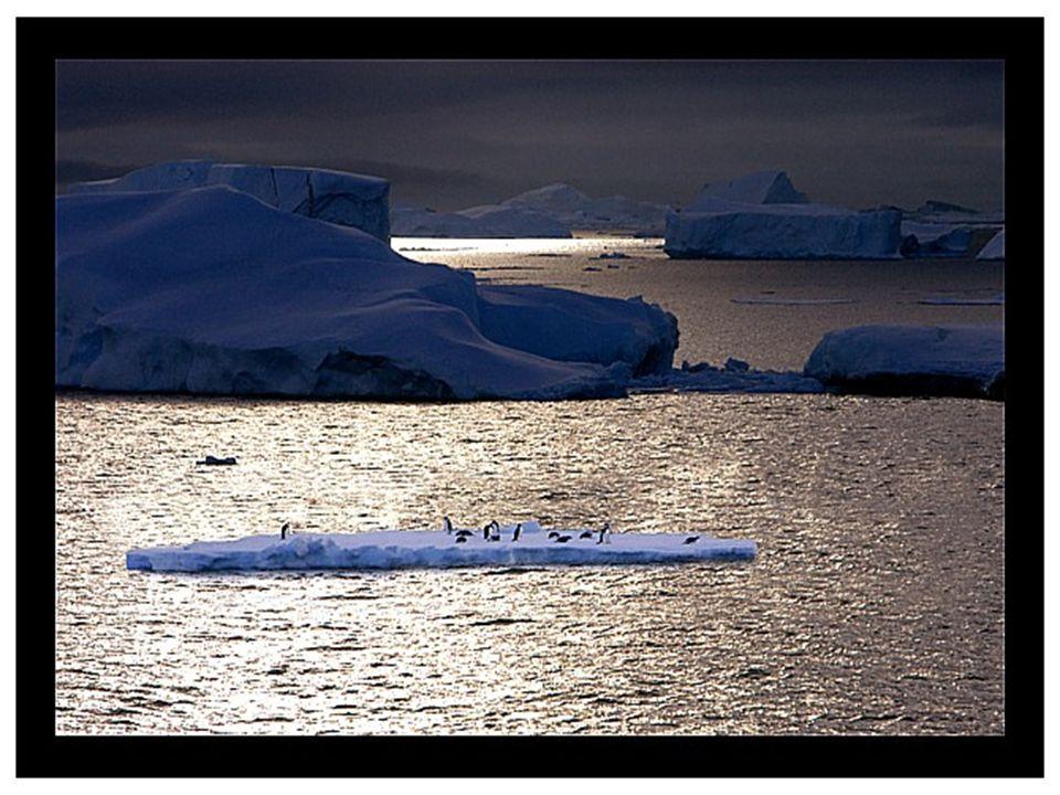 Etwa 99% des Gebietes sind mit Eis bedeckt, und die durchschnittliche Dicke erreicht bis zu 2.500 m. An verschiedenen Stellen sind 4.775 m gemessen wo