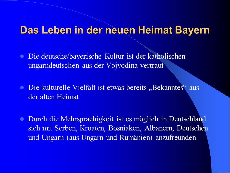 Das Leben in der neuen Heimat Bayern Die deutsche/bayerische Kultur ist der katholischen ungarndeutschen aus der Vojvodina vertraut Die kulturelle Vielfalt ist etwas bereits Bekanntes aus der alten Heimat Durch die Mehrsprachigkeit ist es möglich in Deutschland sich mit Serben, Kroaten, Bosniaken, Albanern, Deutschen und Ungarn (aus Ungarn und Rumänien) anzufreunden