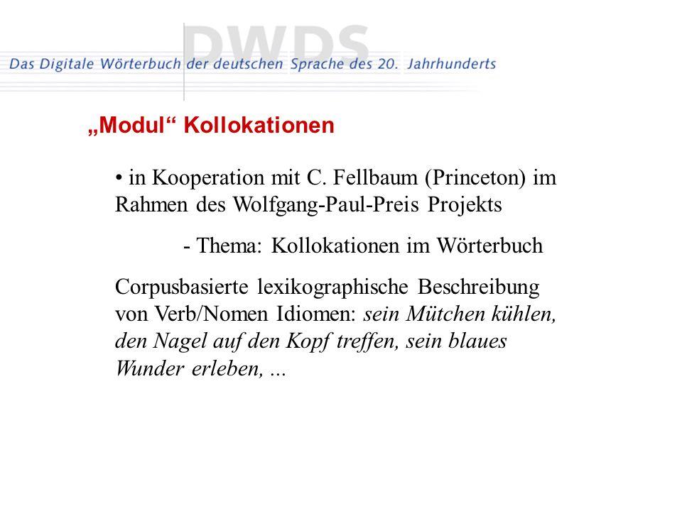 in Kooperation mit C. Fellbaum (Princeton) im Rahmen des Wolfgang-Paul-Preis Projekts - Thema: Kollokationen im Wörterbuch Corpusbasierte lexikographi