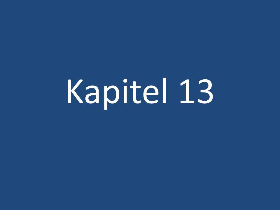 Kapitel 13