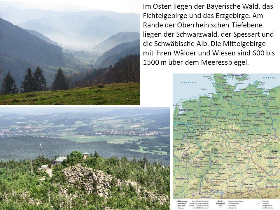 Im Osten liegen der Bayerische Wald, das Fichtelgebirge und das Erzgebirge. Am Rande der Oberrheinischen Tiefebene liegen der Schwarzwald, der Spessar