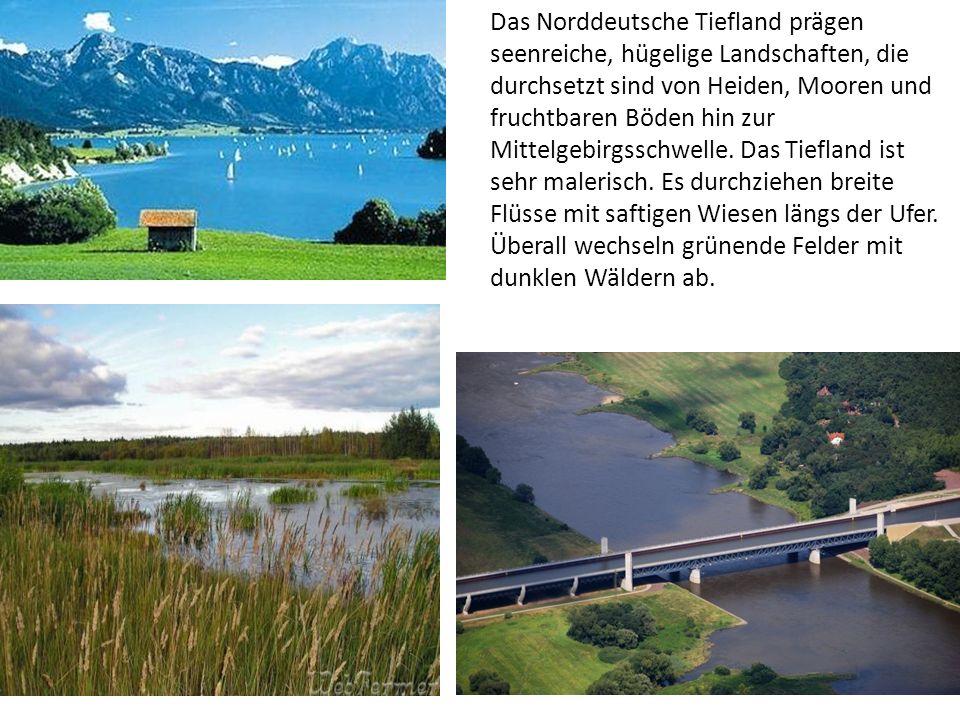 Das Norddeutsche Tiefland prägen seenreiche, hügelige Landschaften, die durchsetzt sind von Heiden, Mooren und fruchtbaren Böden hin zur Mittelgebirgs