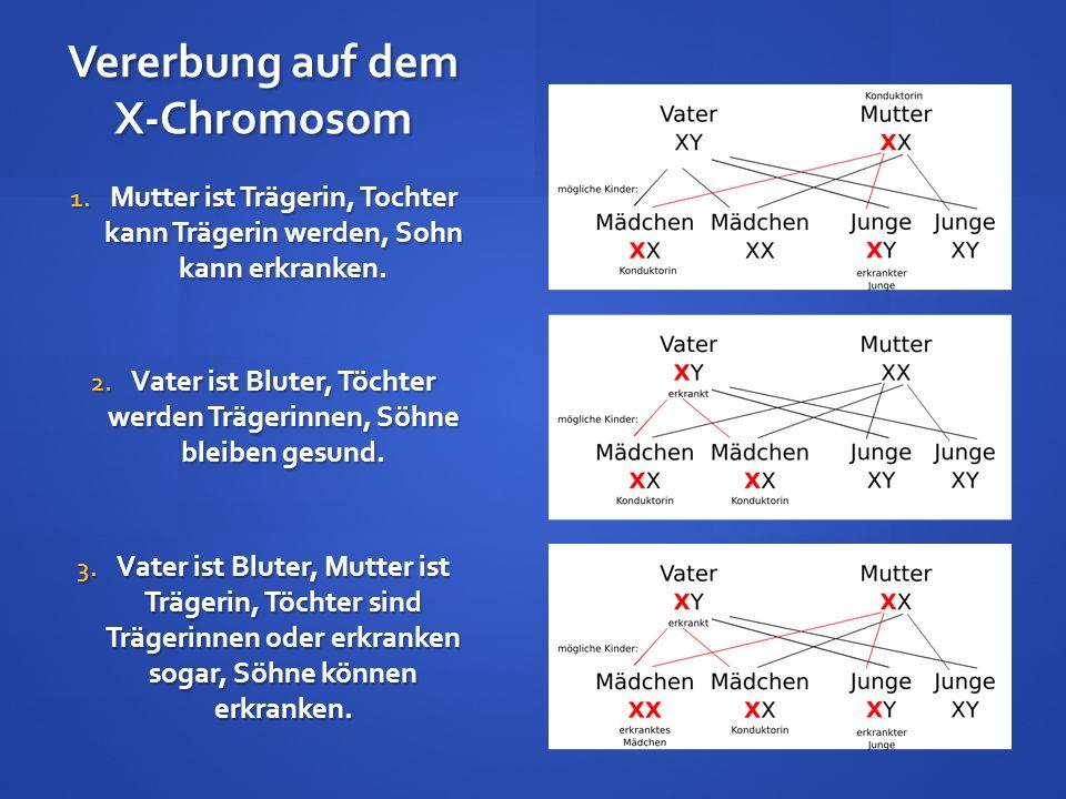 Vererbung auf dem X-Chromosom 1. Mutter ist Trägerin, Tochter kann Trägerin werden, Sohn kann erkranken. 2. Vater ist Bluter, Töchter werden Trägerinn