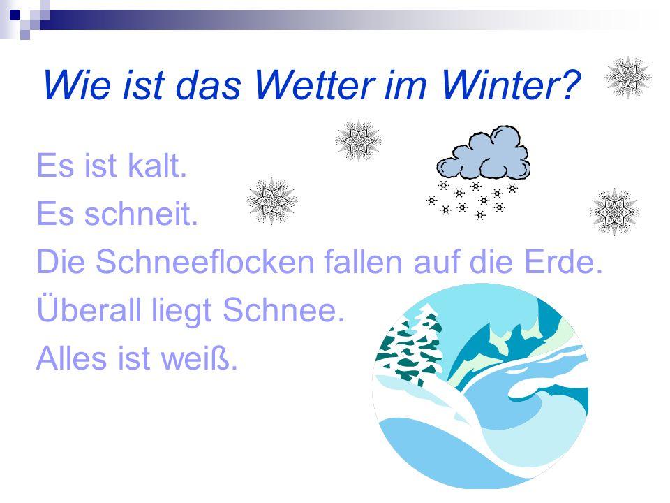 Wie ist das Wetter im Winter? Es ist kalt. Es schneit. Die Schneeflocken fallen auf die Erde. Überall liegt Schnee. Alles ist weiß.