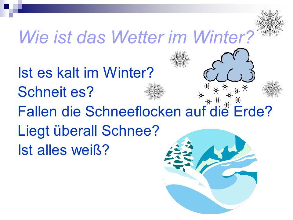 Wie ist das Wetter im Winter? Ist es kalt im Winter? Schneit es? Fallen die Schneeflocken auf die Erde? Liegt überall Schnee? Ist alles weiß?