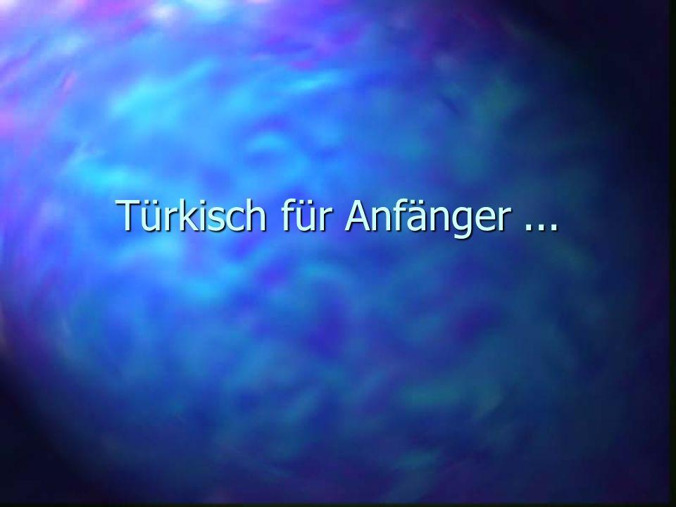 Türkisch für Anfänger...