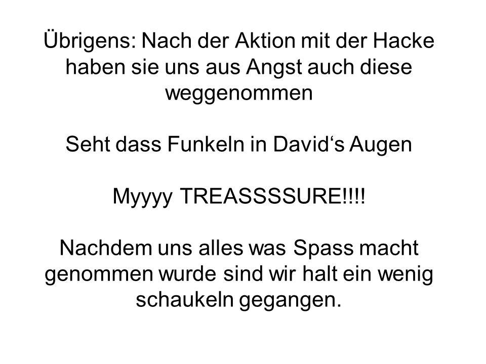 Übrigens: Nach der Aktion mit der Hacke haben sie uns aus Angst auch diese weggenommen Seht dass Funkeln in Davids Augen Myyyy TREASSSSURE!!!.