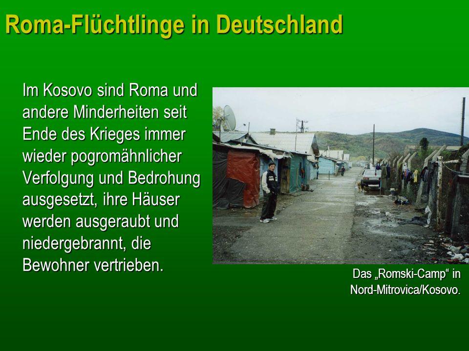 Roma-Flüchtlinge in Deutschland Im Kosovo sind Roma und andere Minderheiten seit Ende des Krieges immer wieder pogromähnlicher Verfolgung und Bedrohun
