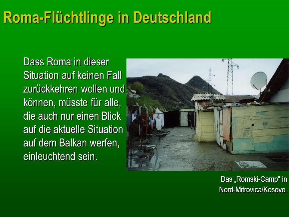 Roma-Flüchtlinge in Deutschland Dass Roma in dieser Situation auf keinen Fall zurückkehren wollen und können, müsste für alle, die auch nur einen Blic