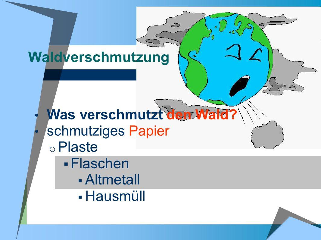 Waldverschmutzung Was verschmutzt den Wald? schmutziges Papier o Plaste Flaschen Altmetall Hausmüll