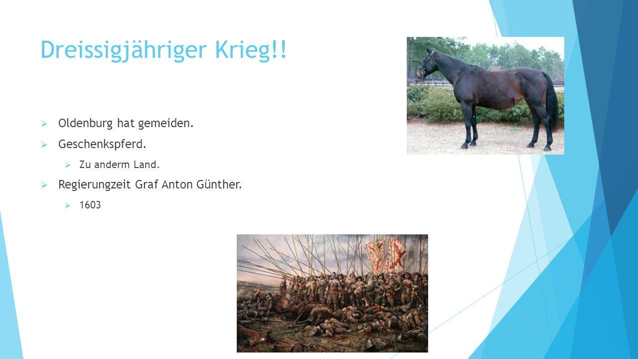 Das Pferd!!!!.
