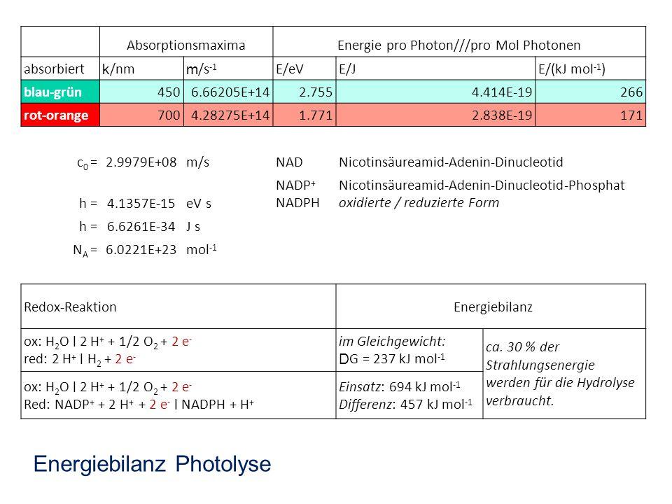 AbsorptionsmaximaEnergie pro Photon///pro Mol Photonen absorbiert k /nm m /s -1 E/eVE/JE/(kJ mol -1 ) blau-grün4506.66205E+142.7554.414E-19266 rot-ora