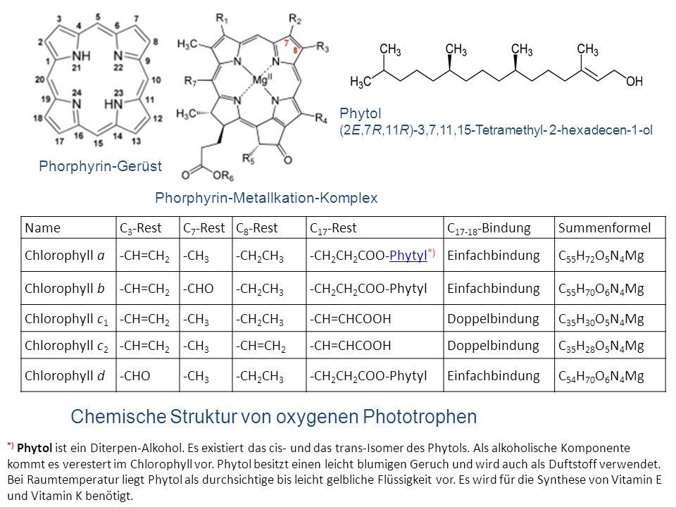 NameR 1 -RestR 2 -RestR 3 -RestR 4 -RestR 5 -RestR 6 -Rest R 7 - Rest Bchl a–CO–CH 3 –CH 3 a –CH 2 CH 3 –CH 3 –CO–O–CH 3 –Phytyl–H Bchl b–CO–CH 3 –CH 3 a =CH–CH 3 –CH 3 –CO–O–CH 3 –Phytyl–H Bchl c–CHOH–CH 3 –CH 3 –C 2 H 5 b –C 3 H 7 –C 4 H 9 –CH 3 –C 2 H 5 –H–Farnesyl–CH 3 Bchl c s –CHOH–CH 3 –CH 3 –C 2 H 5 –CH 3 –H–Stearylalkohol–CH 3 Bchl d–CHOH–CH 3 –CH 3 –C 2 H 5 b –C 3 H 7 –C 4 H 9 –CH 3 –C 2 H 5 –H–Farnesyl–H Bchl e–CHOH–CH 3 –CHO –C 2 H 5 b –C 3 H 7 –C 4 H 9 –C 2 H 5 –H–Farnesyl–CH 3 Bchl g–CH=CH 2 –CH 3 a –C 2 H 5 –CH 3 –CO–O–CH 3 –Farnesyl–H Chemische Struktur von anoxygenen Phototrophen: Bakteriochlorophylle (Bchl) Phorphyrin-Gerüst Phorphyrin-Metallkation-Komplex Metallkation = Mg 2+