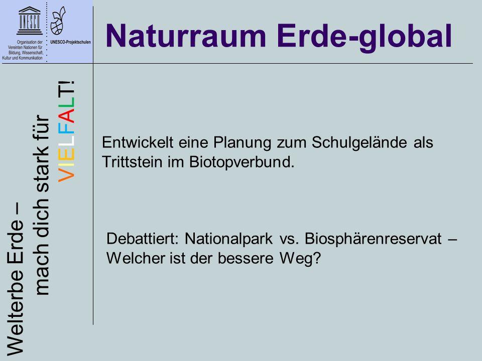 Naturraum Erde-global Welterbe Erde – mach dich stark für VIELFALT! Entwickelt eine Planung zum Schulgelände als Trittstein im Biotopverbund. Debattie