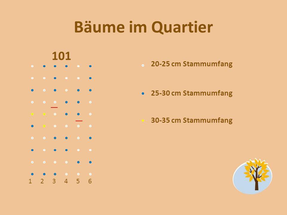 Bäume im Quartier 101 123456 20-25 cm Stammumfang 25-30 cm Stammumfang 30-35 cm Stammumfang