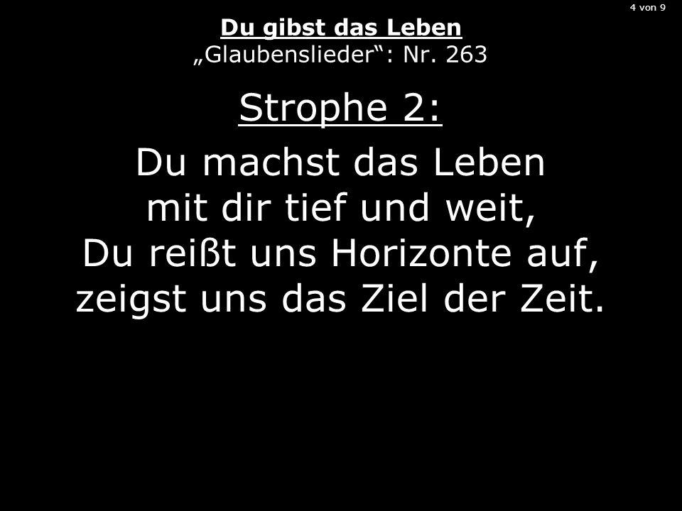 4 von 9 Du gibst das Leben Glaubenslieder: Nr. 263 Strophe 2: Du machst das Leben mit dir tief und weit, Du reißt uns Horizonte auf, zeigst uns das Zi