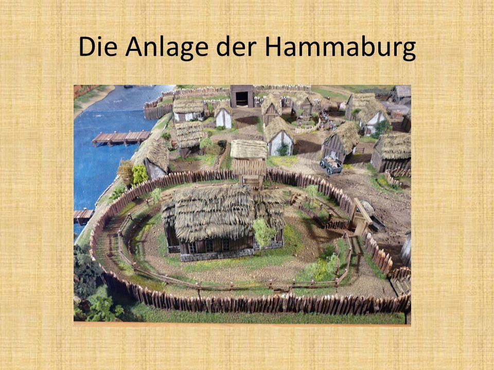 Die Anlage der Hammaburg