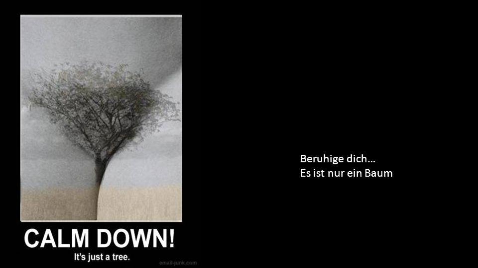Beruhige dich… Es ist nur ein Baum