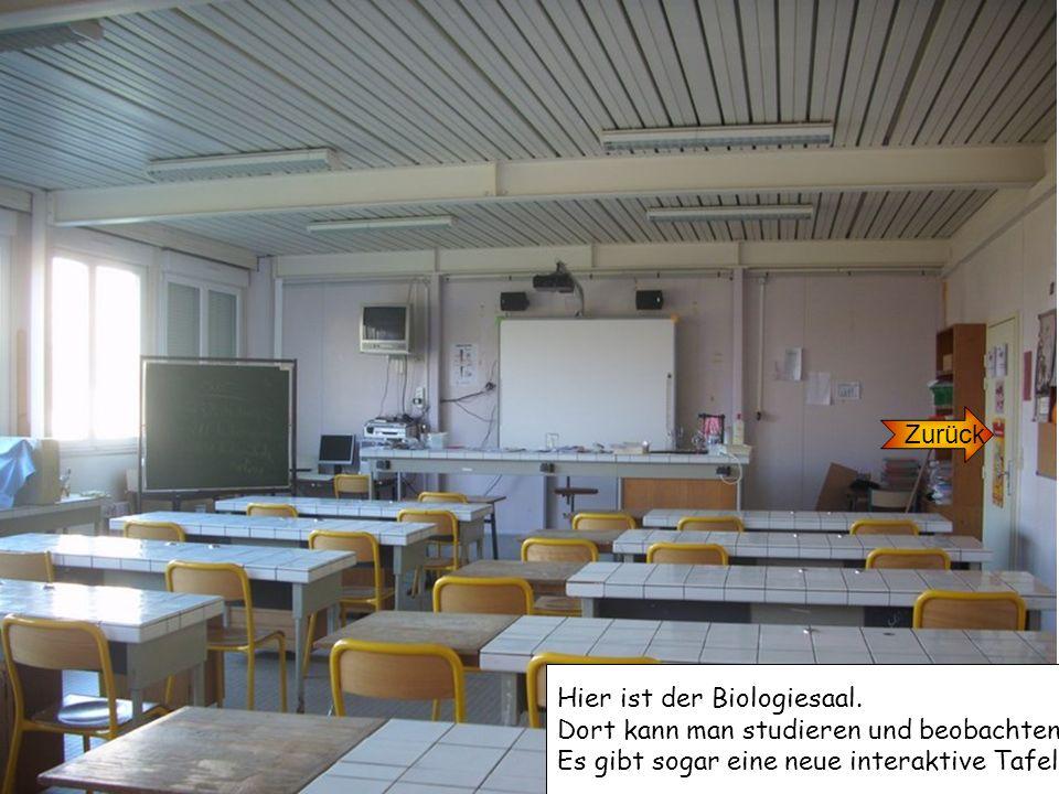 Zurück Hier ist der Biologiesaal. Dort kann man studieren und beobachten. Es gibt sogar eine neue interaktive Tafel.