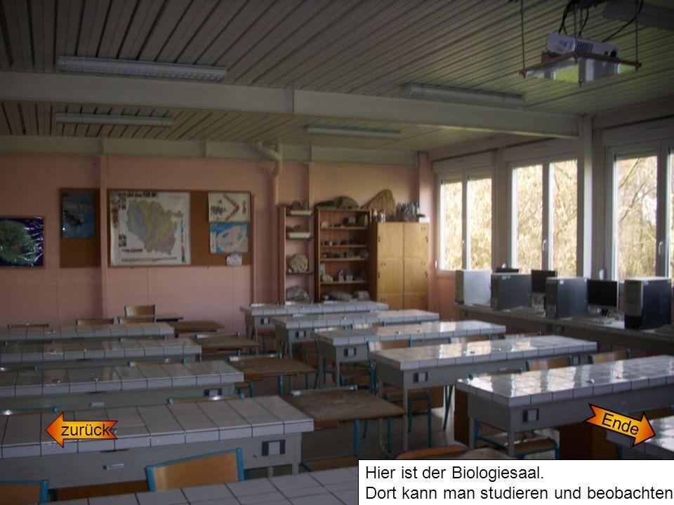 zurück Hier ist der Biologiesaal. Dort kann man studieren und beobachten. Ende