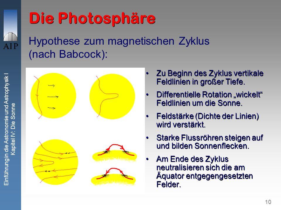 10 Einführung in die Astronomie und Astrophysik I Kapitel IV: Die Sonne Die Photosphäre Zu Beginn des Zyklus vertikale Feldlinien in großer Tiefe. Dif