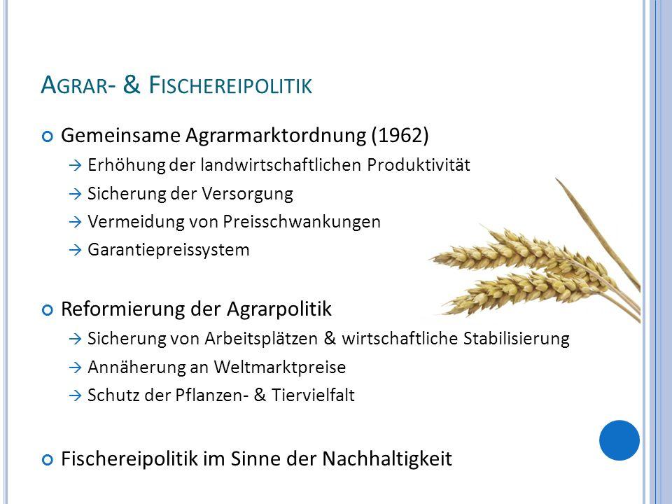 A GRAR - & F ISCHEREIPOLITIK Gemeinsame Agrarmarktordnung (1962) Erhöhung der landwirtschaftlichen Produktivität Sicherung der Versorgung Vermeidung v
