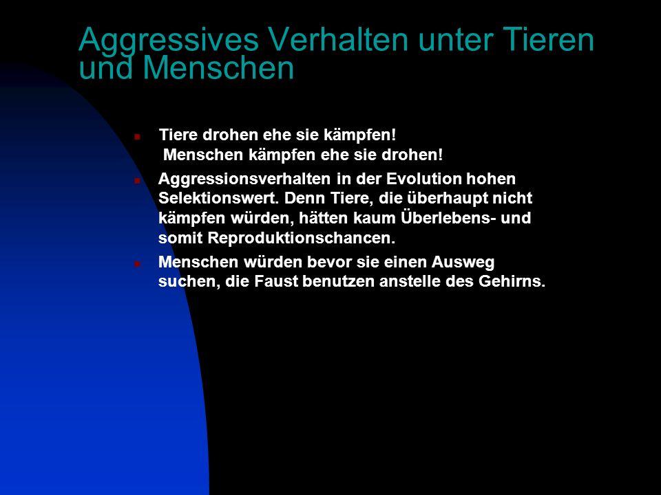 Aggressives Verhalten unter Tieren und Menschen Tiere drohen ehe sie kämpfen.