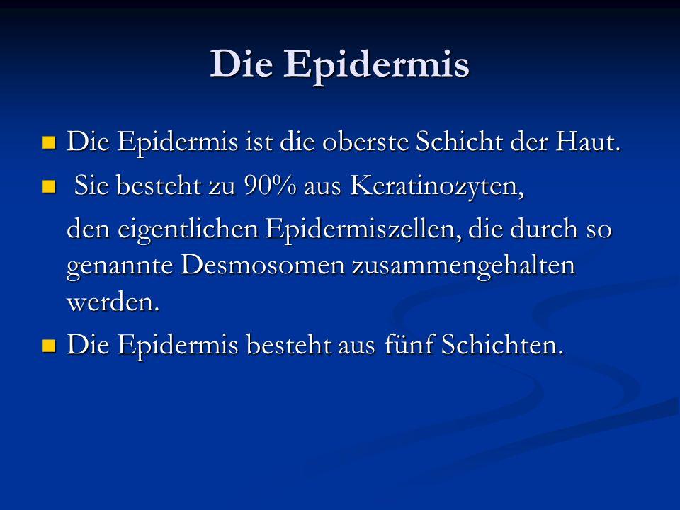 Die Epidermis Die Epidermis ist die oberste Schicht der Haut. Die Epidermis ist die oberste Schicht der Haut. Sie besteht zu 90% aus Keratinozyten, Si