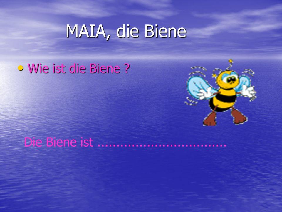MAIA, die Biene MAIA, die Biene Wie ist die Biene ? Wie ist die Biene ? Die Biene ist..................................