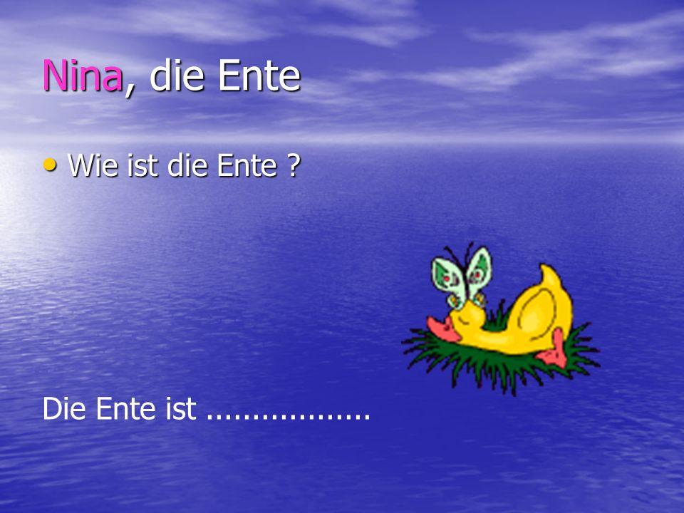 Nina, die Ente Wie ist die Ente ? Wie ist die Ente ? Die Ente ist..................