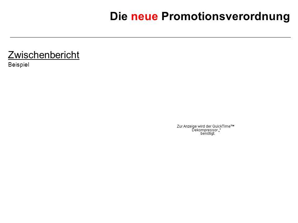 Die neue Promotionsverordnung Zwischenbericht Beispiel
