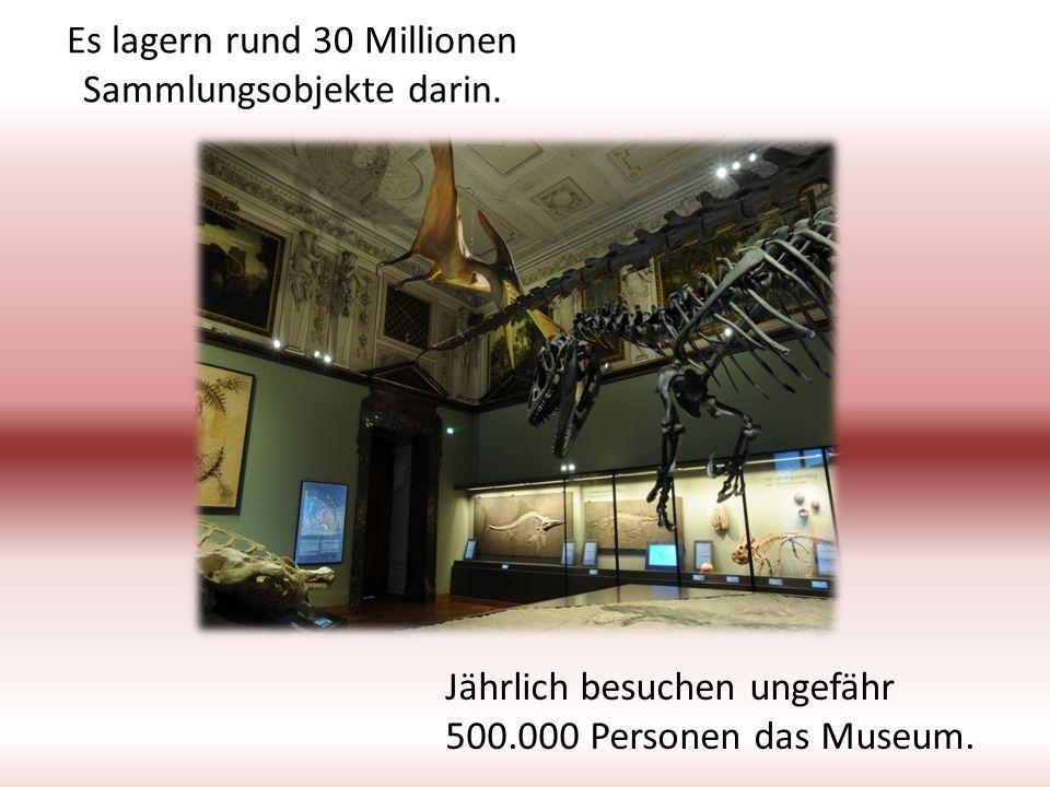 Es lagern rund 30 Millionen Sammlungsobjekte darin. Jährlich besuchen ungefähr 500.000 Personen das Museum.