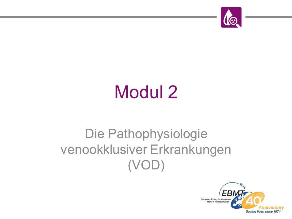 Modul 2 Die Pathophysiologie venookklusiver Erkrankungen (VOD)