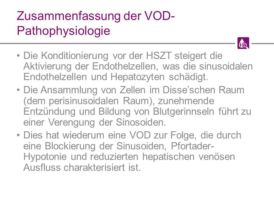 Zusammenfassung der VOD- Pathophysiologie Die Konditionierung vor der HSZT steigert die Aktivierung der Endothelzellen, was die sinusoidalen Endothelzellen und Hepatozyten schädigt.