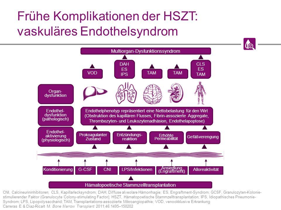 Frühe Komplikationen der HSZT: vaskuläres Endothelsyndrom CNI, Calcineurininhibitoren; CLS, Kapillarlecksyndrom; DAH, Diffuse alveolare Hämorrhagie; ES, Engraftment-Syndrom; GCSF, Granulozyten-Kolonie- stimulierender Faktor (Granulocyte Colony-stimulating Factor); HSZT, Hämatopoetische Stammzelltransplantation; IPS, Idiopathisches Pneumonie- Syndrom; LPS, Lipopolysaccharid; TAM, Transplantations-assoziierte Mikroangiopathie; VOD, venookklusive Erkrankung Carreras E & Diaz-Ricart M.