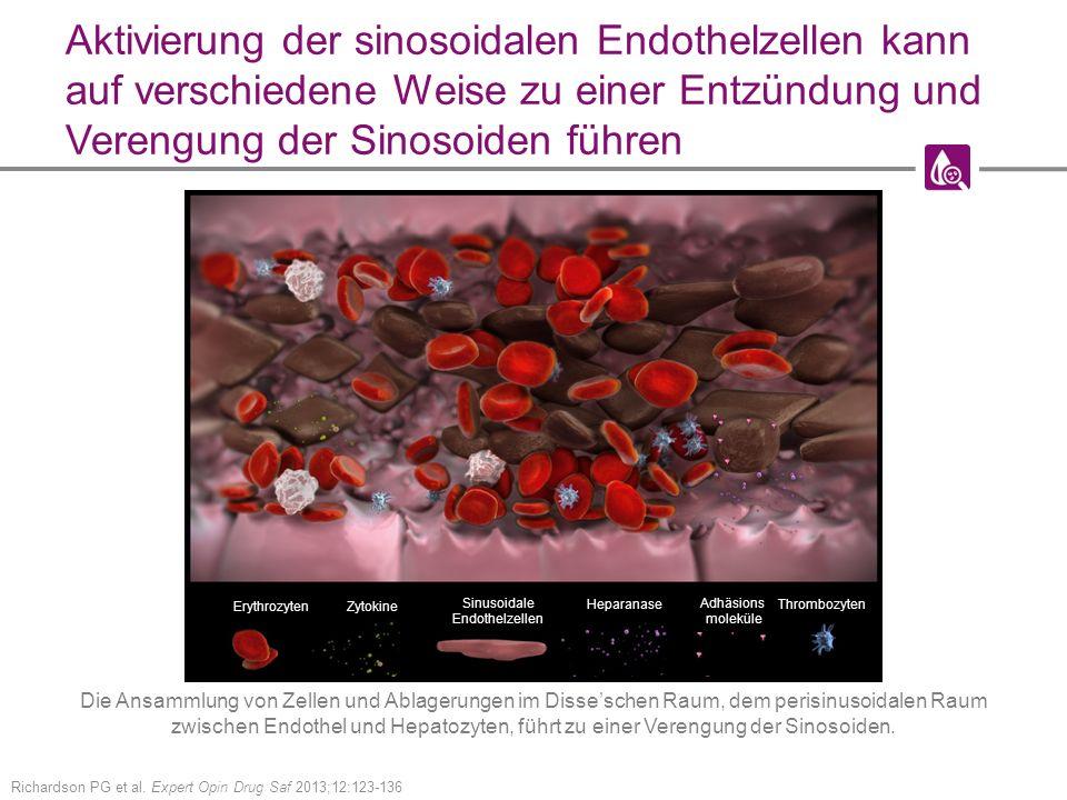 Aktivierung der sinosoidalen Endothelzellen kann auf verschiedene Weise zu einer Entzündung und Verengung der Sinosoiden führen Richardson PG et al.