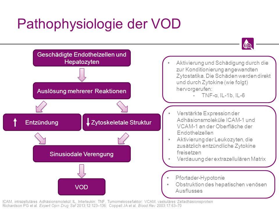 Pathophysiologie der VOD ICAM, intrazelluläres Adhäsionsmolekül; IL, Interleukin; TNF, Tumornekrosefaktor; VCAM, vaskuläres Zelladhäsionsprotein Richardson PG et al.
