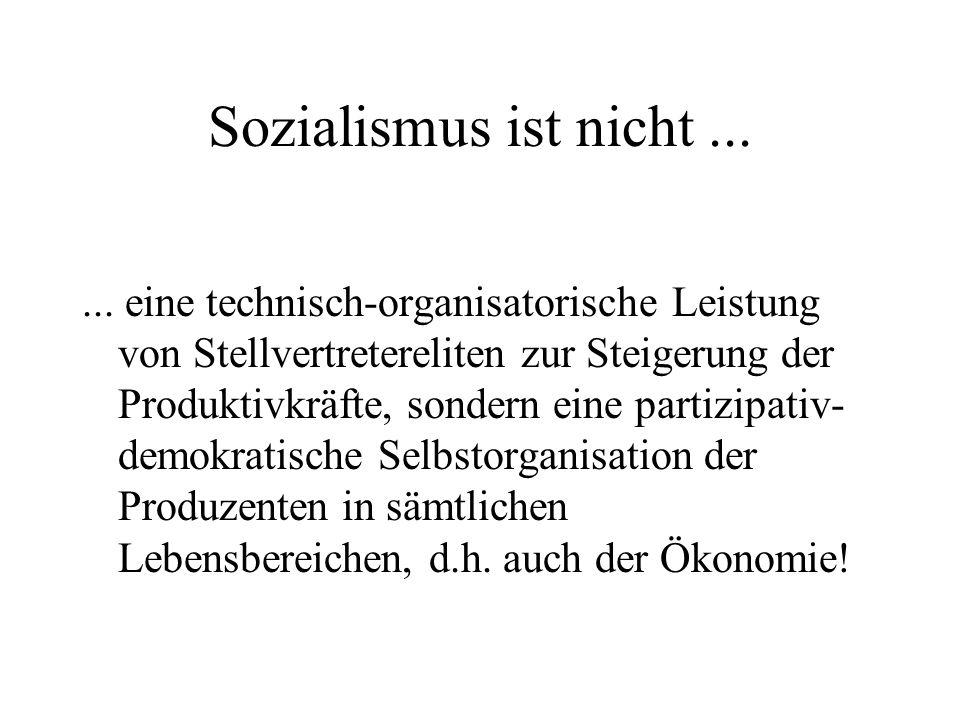 Sozialismus ist nicht...... eine technisch-organisatorische Leistung von Stellvertretereliten zur Steigerung der Produktivkräfte, sondern eine partizi