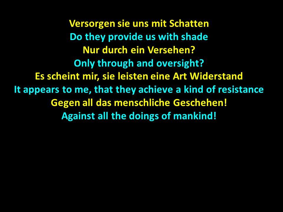 Versorgen sie uns mit Schatten Do they provide us with shade Nur durch ein Versehen.
