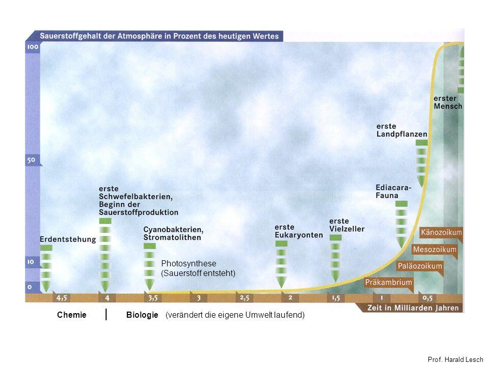 Prof. Harald Lesch ChemieBiologie (verändert die eigene Umwelt laufend)   Photosynthese (Sauerstoff entsteht)