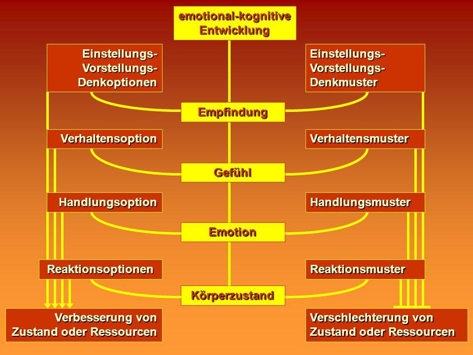 Körperzustand Verschlechterung von Zustand oder Ressourcen emotional-kognitive Entwicklung Verbesserung von Zustand oder Ressourcen Reaktionsoptionen