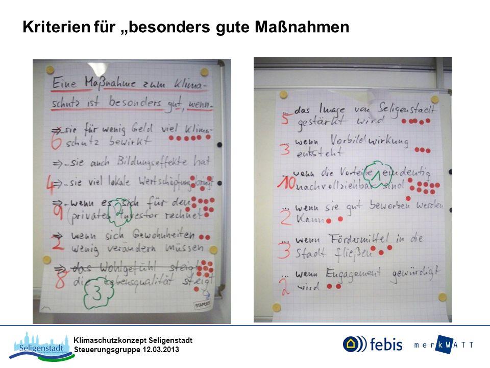 Klimaschutzkonzept Seligenstadt Steuerungsgruppe 12.03.2013 Kriterien für besonders gute Maßnahmen