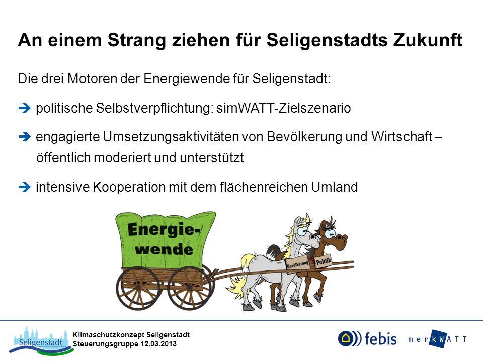 Klimaschutzkonzept Seligenstadt Steuerungsgruppe 12.03.2013 Maßnahmen zur Förderung nachhaltiger Mobilität Umbaumaßnahmen im Straßenraum die die Vereinbarkeit der Nutzung durch die verschiedenen Verkehrsarten unter besonderer Berücksichtigung des Fußverkehrs, verbessern und dazu beitragen, die CO2-Emissionen zu senken 50 % Förderquote mind.