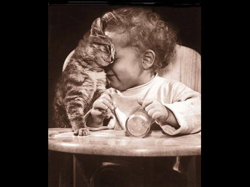 Als Gott an diesem Morgen das Fenster zum Himmel öffnete, sah er mich und fragte : « Mein Kind, was ist Dein größter Wunsch für heute ? »