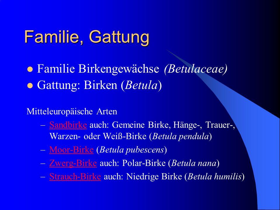 Familie, Gattung Familie Birkengewächse (Betulaceae) Gattung: Birken (Betula) Mitteleuropäische Arten –Sandbirke auch: Gemeine Birke, Hänge-, Trauer-, Warzen- oder Weiß-Birke (Betula pendula)Sandbirke –Moor-Birke (Betula pubescens)Moor-Birke –Zwerg-Birke auch: Polar-Birke (Betula nana)Zwerg-Birke –Strauch-Birke auch: Niedrige Birke (Betula humilis)Strauch-Birke