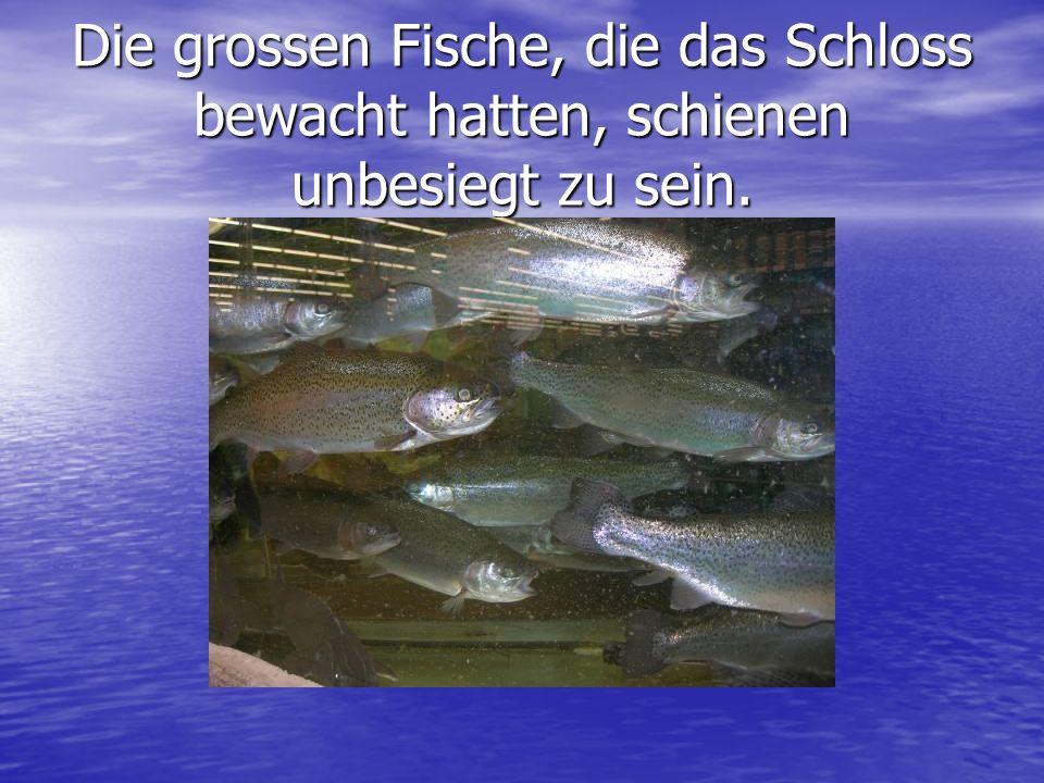 Die grossen Fische, die das Schloss bewacht hatten, schienen unbesiegt zu sein.